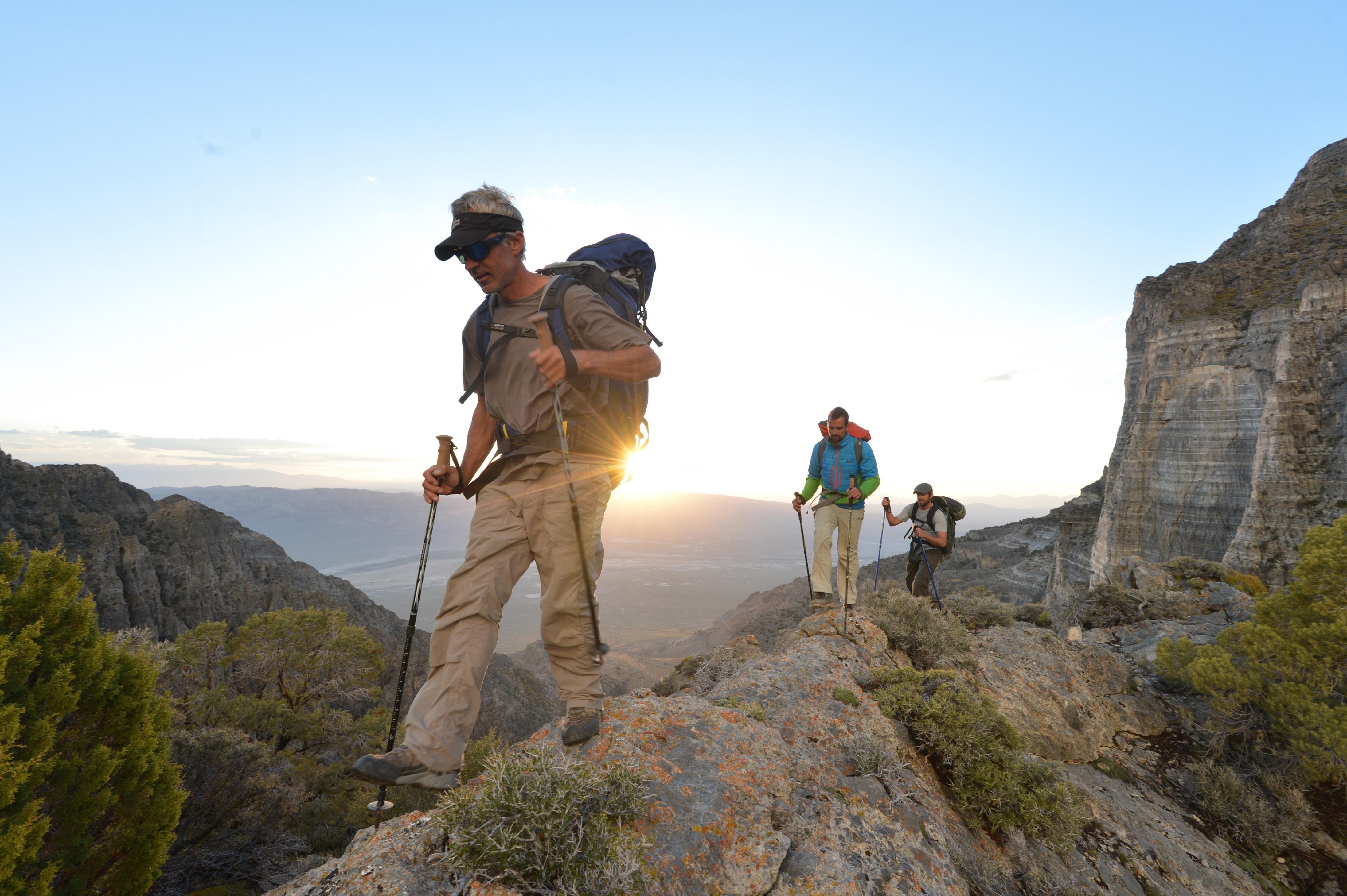 Amazon.com : Mountainsmith Carbonlite Pro Trekking Poles