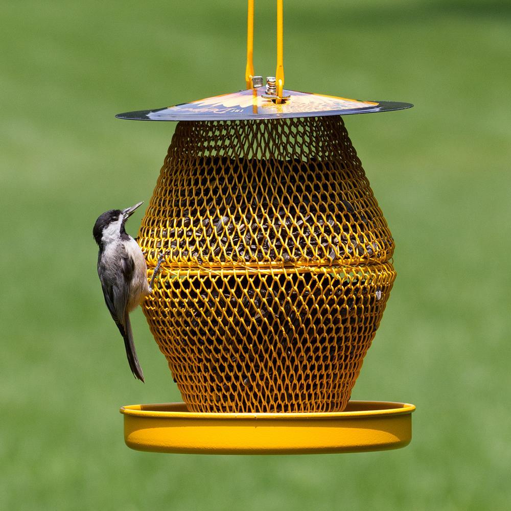 Amazon.com : Perky-Pet DSL00389 No/No Designer Double Wild Bird Feeder with Tray : Patio, Lawn ...