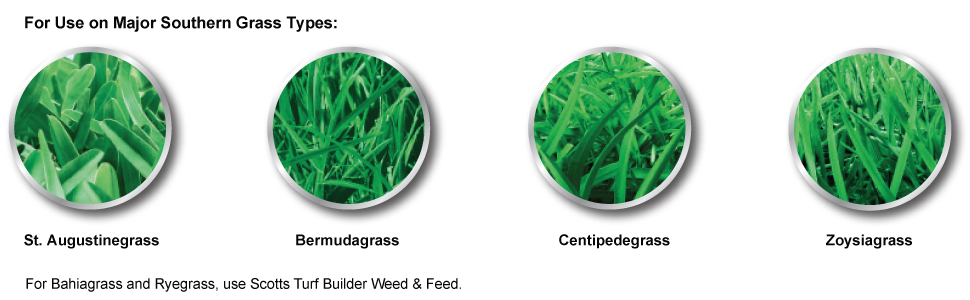 Scotts weed and feed application