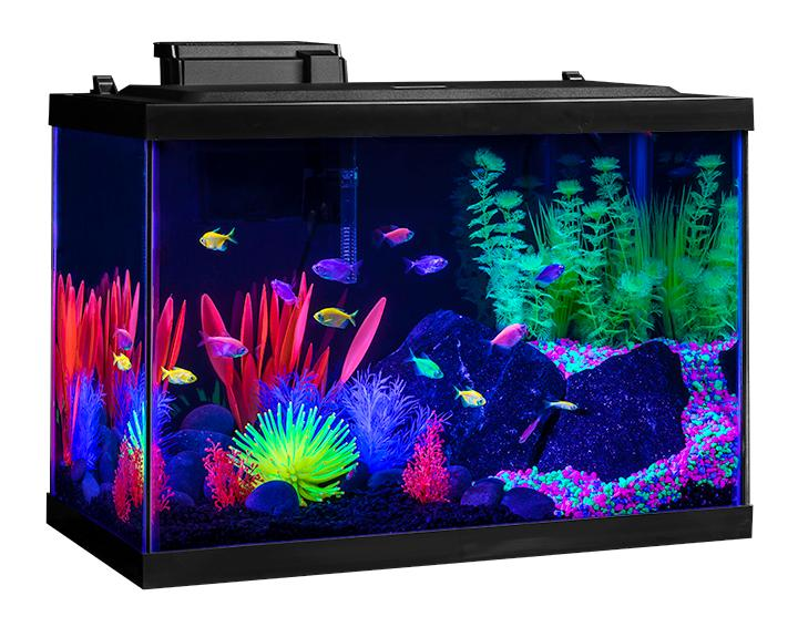 Aquarium Tank Kit 20 gallon Glow Fish Neon Color Starter ...