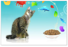 Is Friskies Wet Food Good For Kittens