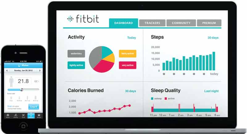 Amazon.com: Fitbit Aria Wi-Fi Smart Scale, Black: Health