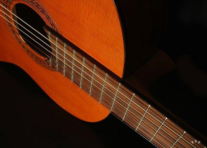 Amazon Com Cordoba C5 Acoustic Nylon String Classical