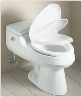 Pujasuka Kohler Devonshire White Toilet Elongated Seat