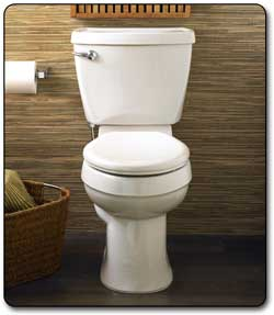 Review American Standard Champion 4 Toilets Reviews