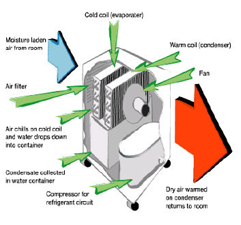 diagram of a dehumidifier construct a diagram of a mass hanging from a spring scale