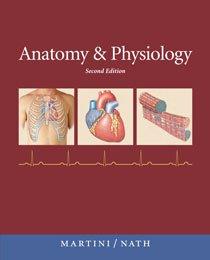 Anatomy & Physiology (2nd Edition)