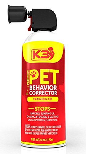 pet obedience schools near me