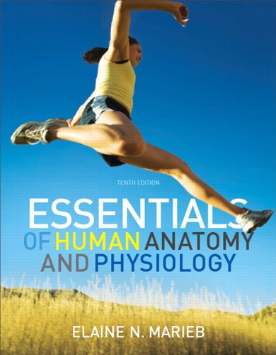 Essentials of Human Anatomy & Physiology (10th Edition), Author ...