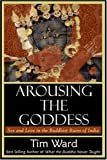 Arousing the Goddess: Sex and Love in the Buddhist Ruins of India